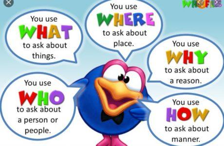 penjelasan dan contoh kalimat wh questions