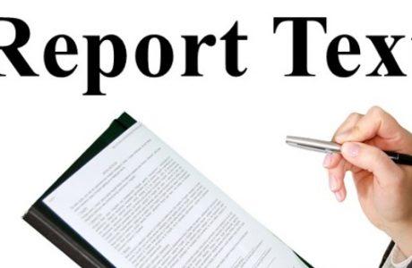 materi dan contoh soal report text bahasa inggris